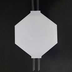 南京工廠專業定製各種顏色背光源黑白屏背光源背光板 1