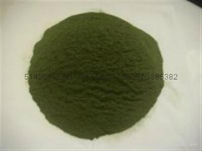供应各种海藻粉 1