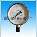 YZ100真空压力表
