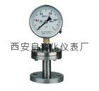 YTP-100MF/ML不锈钢隔膜压力表
