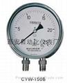 CYW150不鏽鋼差壓表
