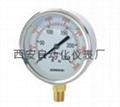 YTN-100BF不鏽鋼耐震壓