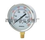 YTN-100BF不锈钢耐震压力表