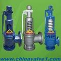 Spring loaded safety valve