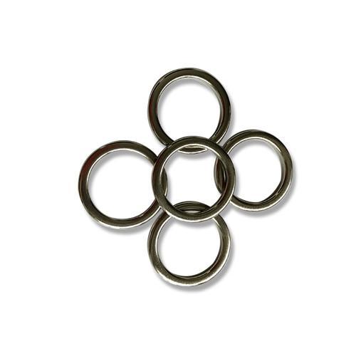 BLDCring magnet electric NdFeB magnet 1