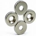 BLDCring magnet electric NdFeB magnet 5
