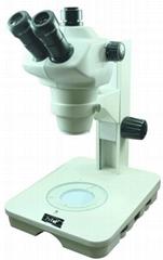 實體顯微鏡
