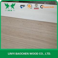 poplar plywood & FSC PLYWOOD