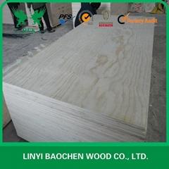 pine plywood & FSC PLYWOOD