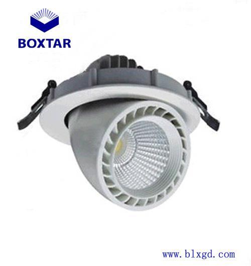 單顆30W超高亮LED象鼻燈 2