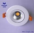 單顆10W超高亮LED象鼻燈 5