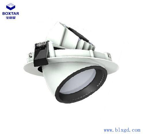 單顆30W超高亮LED象鼻燈 1