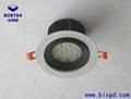 12珠高效LED珠寶燈 2