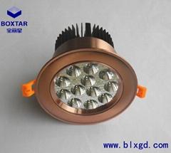 12珠高效LED珠寶燈