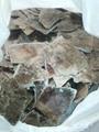 Phlogopite Mica Scrap