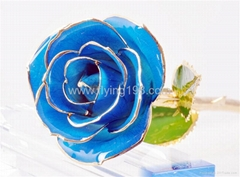 24K Gold Rose - Blue- store forever without wizen