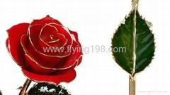 24K Real Gold Rose
