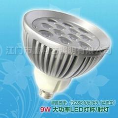 環保綠色LED射燈,9W,E27