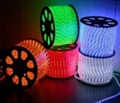 LED Rainbow rope light