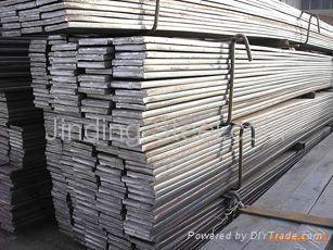 carbon steel Flat Bar 4