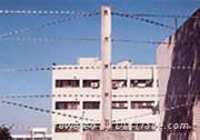 直線型刀片刺繩護欄網