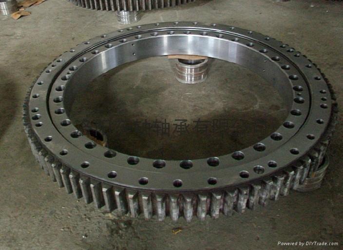 110.25.560 Slewing bearing  2