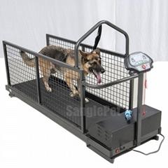 Dog or Canine land treadmills China Factory