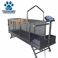 Canine Treadmills China Factory