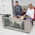 Canine Underwater Treadmill China Factory