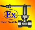 Submersible Water Flow Switches