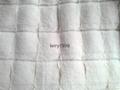 PV plush toy fabric 2