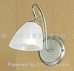 Lamp ornaments glass frosting powder 2