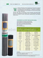 Welded Wire Mesh (Hot Product - 1*)