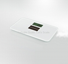 Model CS-100T Electronic Scale (Solar Battery)