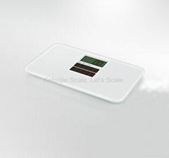 Model CS-100T Electronic Scale (Solar Battery)