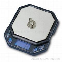 CS-55型电子口袋秤