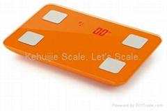 CS-100-III型電子脂肪水分秤