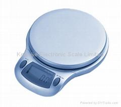 Model CS-91 Electronic Kitchen Scale