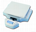 Model CS-A2 Electronic Postal Scale