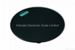 Model CS-105 Electronic Body Scale