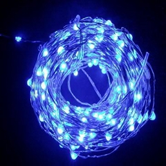 LED 铜线灯串
