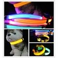 Lighting LED dog collar