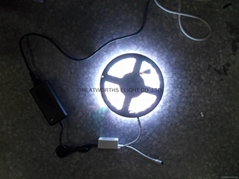 5050 LED Light Strip 5M RGB 12V DC