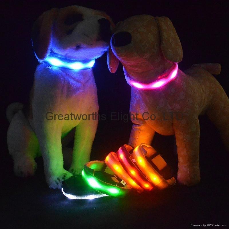 LED stripe pet collar 2.0CM