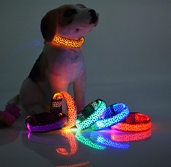 hot led dog collar led pet collar flashing collar power CR2032