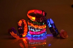 hot led dog collar led p