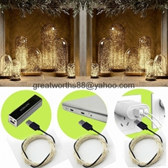 Copper Wire Lights, USB Operated 100 LED 33Feet/10 meters Warm White Rope Lights
