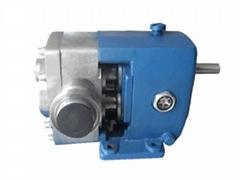 3RP凸轮转子泵