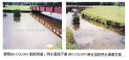 河道生態修復劑 3