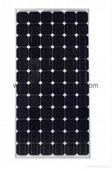 140W~175W Monocrystalline Solar Module